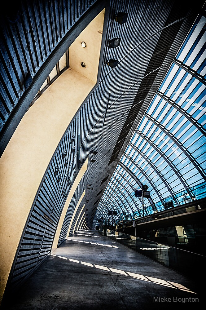 Avignon TGV Station by Mieke Boynton