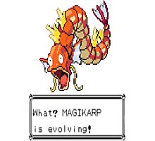 Magikarp Why? Photographic Print