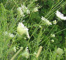 Wild Flower by herenameinsert