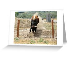 Do Bulls Really See Red? Greeting Card
