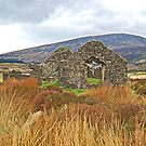Miner House Ruins in Wicklow Mountains, Ireland. by Raymond Doyle (BlackRose Designs)
