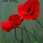 Red Poppies card by Forfarlass