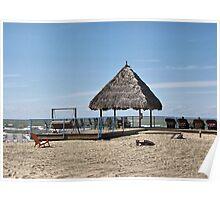 Beachin' It on Lake Erie Poster