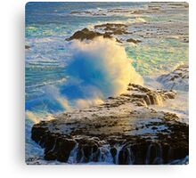 Phillip Island Canvas Print