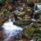 Gads Creek by Damon Colbeck