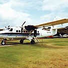 de Havilland Otter at Great Barrier Island - a tale to tell...........! by Roy  Massicks