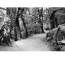 Glendalough, Wicklow, Ireland Photographic Print