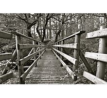 A Bridge Too Far Photographic Print