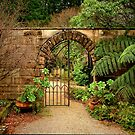 Enticement ~ Yengo Heritage Gardens, Mt Wilson by Rosalie Dale