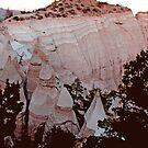 The Summit of Tent Rocks, NM  by NovaCynthia