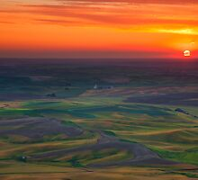 Palouse Sunset by DawsonImages