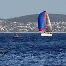 Australia, Tasmania, Hobart by photoj