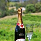 Australia, Tasmania, Where One Of The Best Wines Are Found by photoj