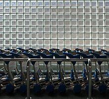 Luggage Trollys All In A Row by Noel Elliot
