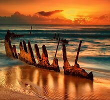 Dicky Dawn by Tracie Louise