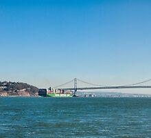 Alcatraz Island by randymir