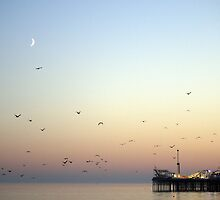 Summer Evening By The Sea by Ms-Bexy