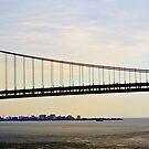 Verrazano Bridge from the water by photographist