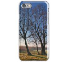 Beautiful autumn landscape at sunrise with fog iPhone Case/Skin