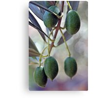 full of goodness ♡♡♡ Canvas Print