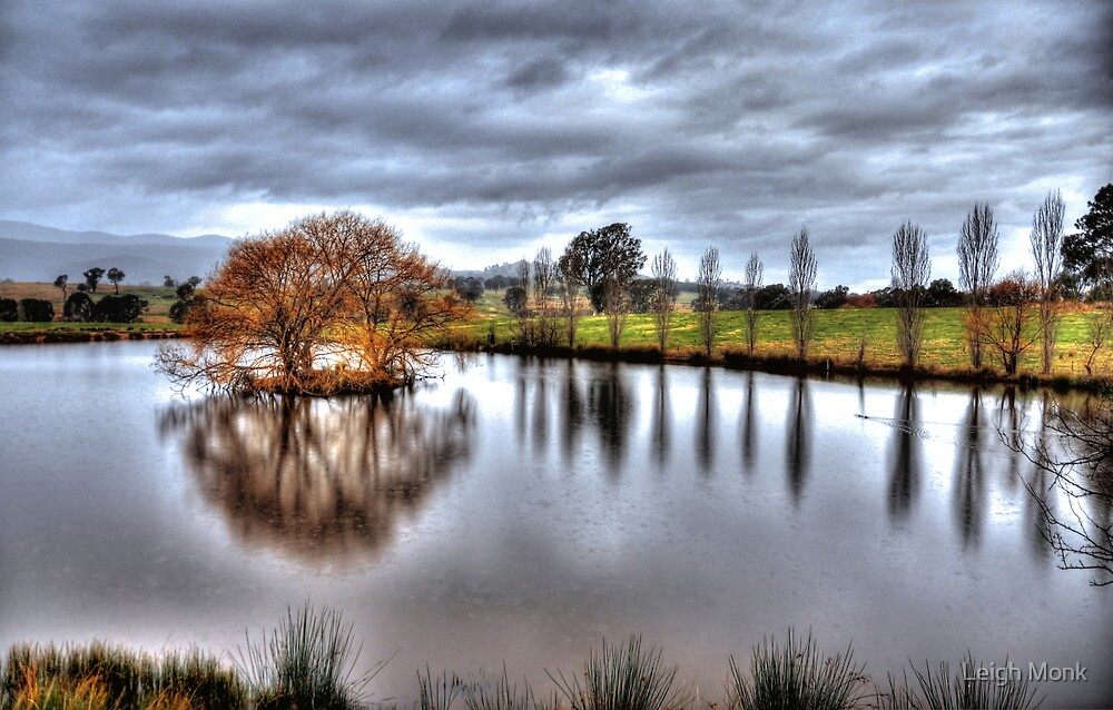 A pool in Swanpool by Leigh Monk