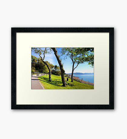 A Sunny Walk Through Lyme's Gardens, Lyme,Dorset.Uk Framed Print