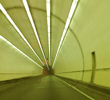 George Wallace Tunnel in Mobile Alabama by barnsis