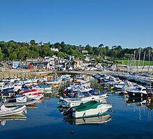 Harbour Overview ~ Lyme Regis by Susie Peek