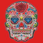 Fiesta Scull by Adam Campen