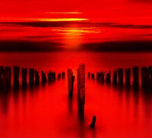 Red by timpr