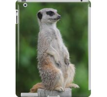 Meerkat guard iPad Case/Skin
