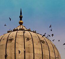 Pigeons around dome of the Jama Masjid in Delhi in India by ashishagarwal74