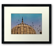 Pigeons around dome of the Jama Masjid in Delhi in India Framed Print