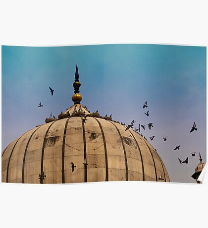 Pigeons around dome of the Jama Masjid in Delhi in India Poster