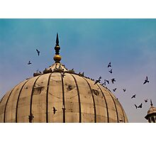Pigeons around dome of the Jama Masjid in Delhi in India Photographic Print