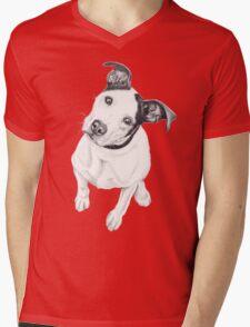 Rosco (Pit Mix) Mens V-Neck T-Shirt