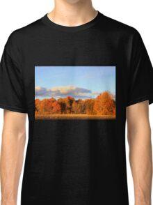 Autumn Shades. Classic T-Shirt