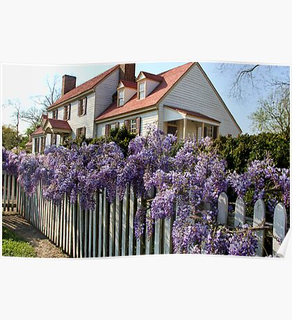 Wisteria fence Poster