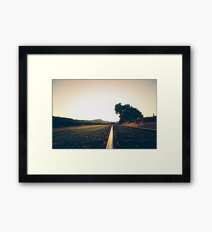 Tracking Life Framed Print