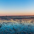 Longest Pier in the World by timmburgess