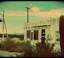 cactus inn by nessbloo