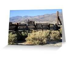 Sage Brush And Tumble Weeds Greeting Card