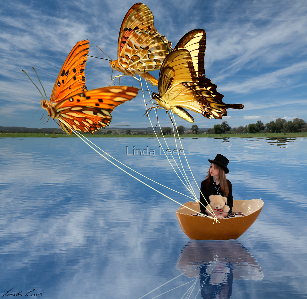 Butterfly Sailing by Linda Lees