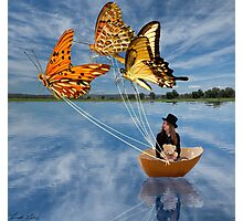 Butterfly Sailing Photographic Print