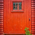 The Saw Mill Door by Debra Fedchin