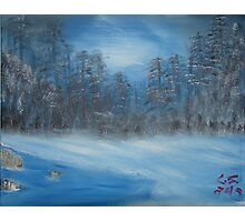 """Winter Scene 2""  by Carter L. Shepard Photographic Print"