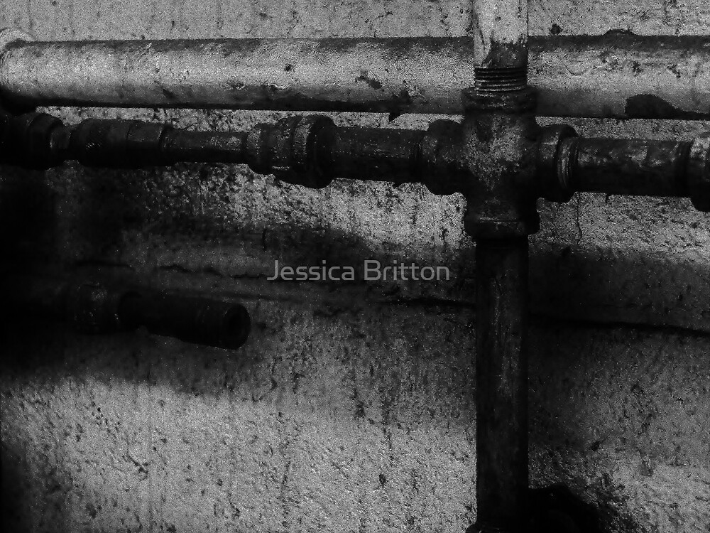 Pipe Lines by Jessica Britton