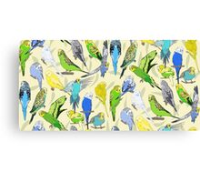 Budgies - Pale Canvas Print