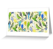 Budgies - Pale Greeting Card