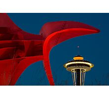 Olympic Sculpture Park and the Space Needle Photographic Print